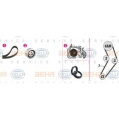 Kit correas dentadas/bomba de agua