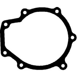 Seal / Gasket, Water Pump
