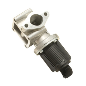 Hueco, Valve, Exhaust Gas Recirculation (EGR)