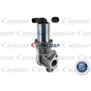 null, Valve, Exhaust Gas Recirculation (EGR)