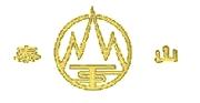 Taishan Pneus