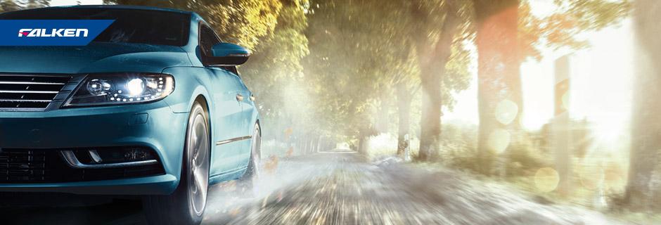 EUROALL SEASON AS210 – Volkswagen Passat