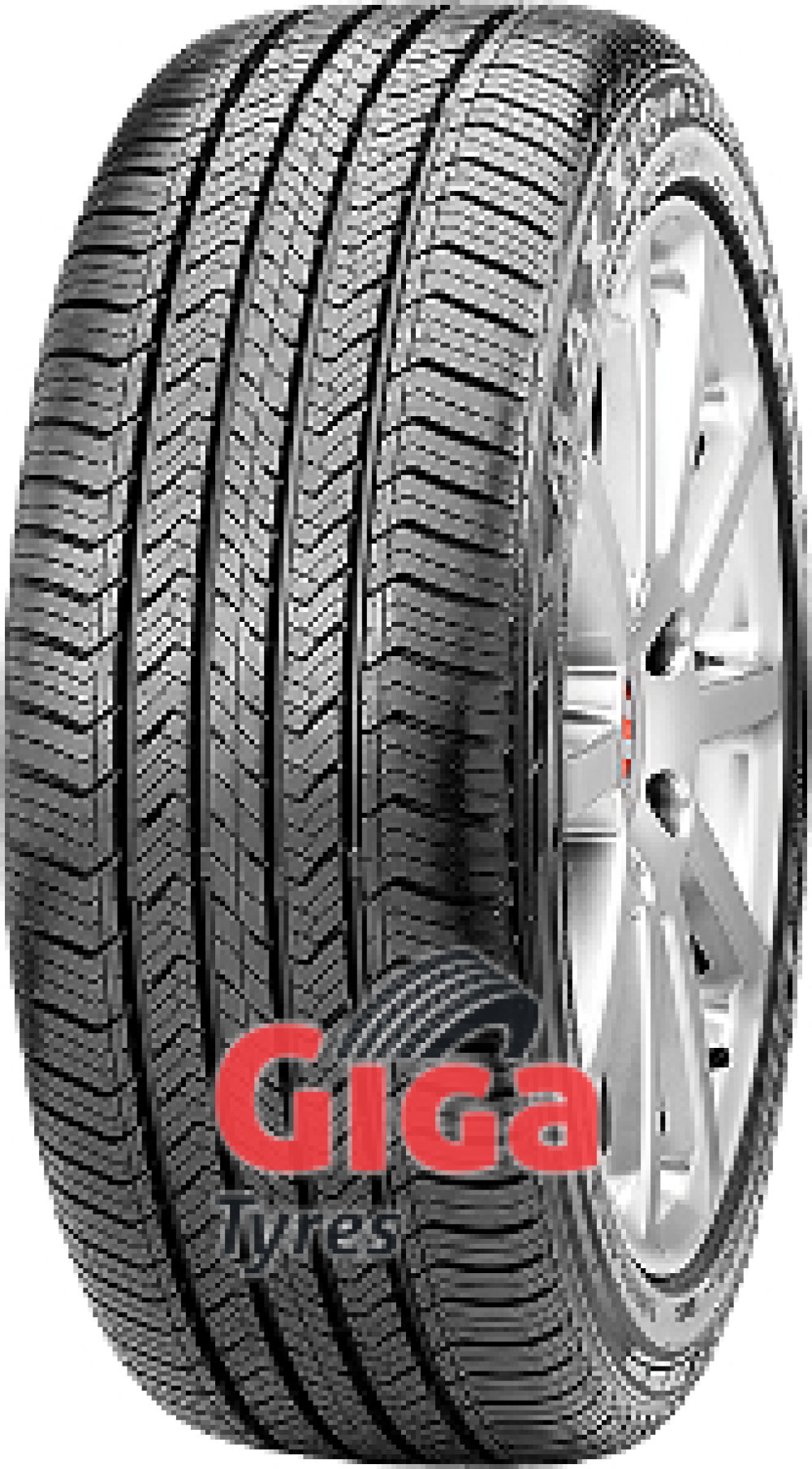 Maxxis HP-M3 ( 255/45 R20 105V XL with rim protection (MFS) )
