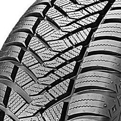 Image of Maxxis AP2 All Season ( 205/50 R17 93V XL , con bordino di protezione del cerchio (FSL) )