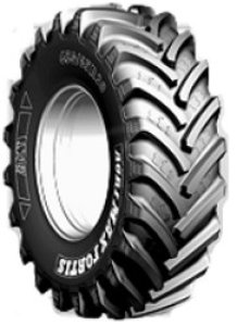 Agrimax Fortis