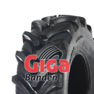Barkley BLA01