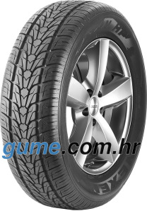 Nexen Roadian HP