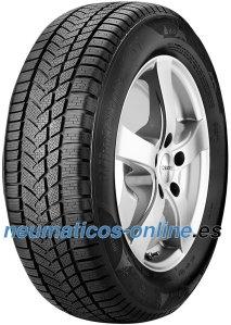 Sunny Wintermax Nw211 neumático