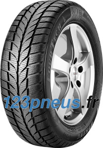 Viking FourTech ( 225/50 R17 98W XL )