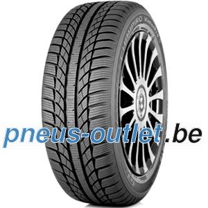 Gt Radial Champiro Winterpro pneu