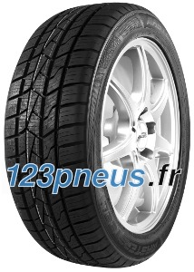 Mastersteel All Weather ( 165/65 R14 79T )