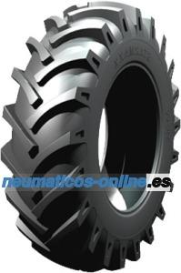 Starmaxx TR 60 neumático