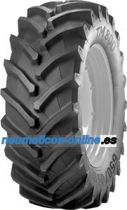 Trelleborg TM800 neumático