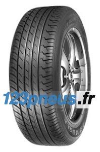 Triangle Tr918 Xl pneu